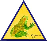 casa-frog